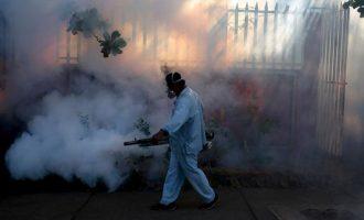 Si shpërndahet virusi Zika dhe cilët janë rreziqet?