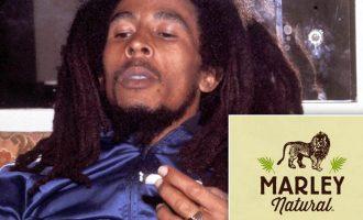 Xhamajkanët ngrihen në mbrojtje të kauzës së Bob Marleyt