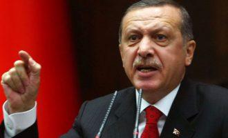 Arrestohet turku që nuk i shërbeu çaj Erdoganit