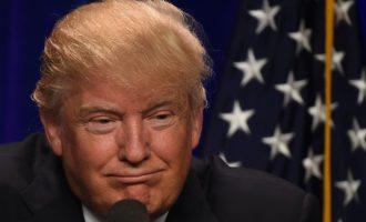 Donald Trump me fjalë të mëdha për Nënën Terezë