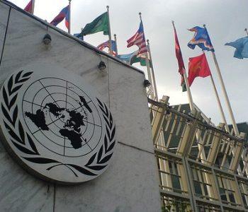 Gjenden të vdekur dy ekspertë të OKB-së