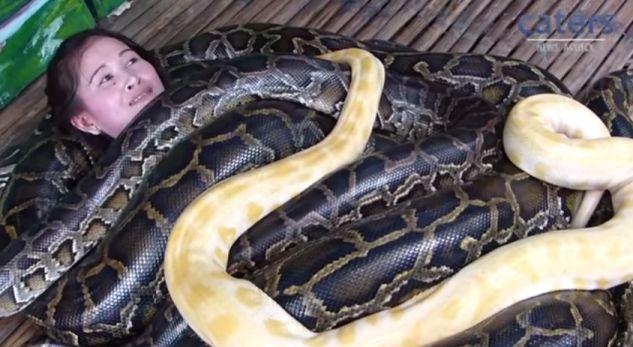 Masazhë nga gjarpërinjtë