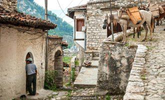 Çfarë mund të mësojë bota nga mikëpritja shqiptare