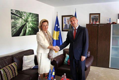 Çollaku:  Do t`i kalojmë sfidat që pengojnë integrimin në BE