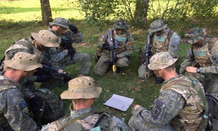 Themelimi i ushtrisë nxori në pah përplasjet politike dhe institucionale