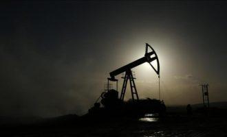 Çmimi global i naftës shënon rënie