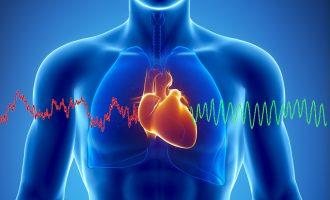 Rreziku për zemrën vjen nga truri