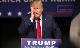 Hallakama 10 ditore e Donald Trumpit si president