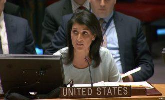 Kosova duhet të anëtarësohet në OKB dhe NATO, thotë ambasadorja amerikane