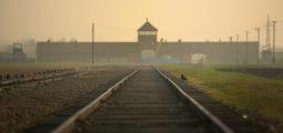 11 të akuzuar për therjen e deles afër kampit Aushvic