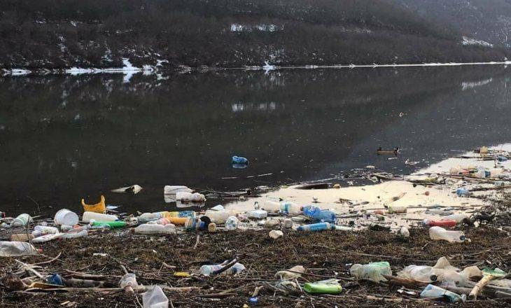 Aksion pastrimi rreth liqenit të Batllavës