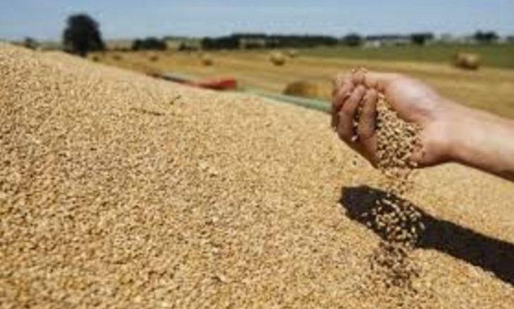 Kosova ka vetëm për 20 ditë grurë nga rezervat shtetërore