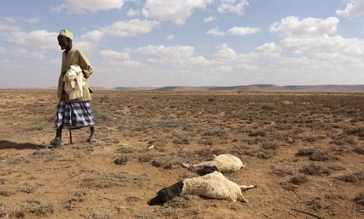 110 persona vdesin nga uria për dy ditë në Somali