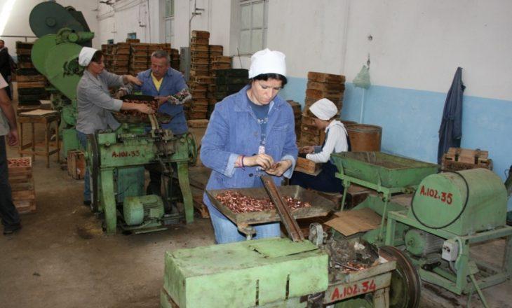 Çdo ditë dorëzohen nga 20 armë dhe municione në Shqipëri