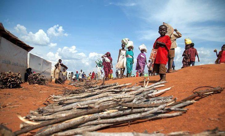 Nisin ndihmat e para ushqimore për Sudanin e Jugut