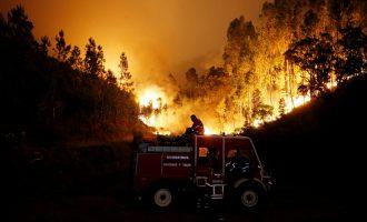 Zjarri në Portugali – përmes fotografive