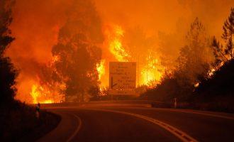 Mbi 60 persona të vdekur nga zjarri në Portugali