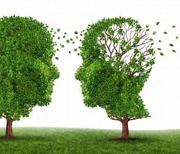 Kujtimet e humbura mund të rizgjohen tek të sëmurët me alzheimer