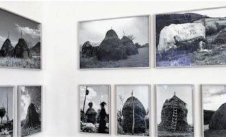 """Mullarët e sanës pjesë e ekspozitës """"Documenta"""""""