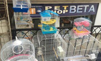 Pas raportimit të Insajderit, Petshopi heq kafshët nga kafazët e ekspozuar në diell