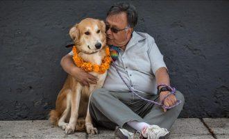 Miqësia e qenit me njeriun mund të jetë rezultat i ndryshimeve gjenetike