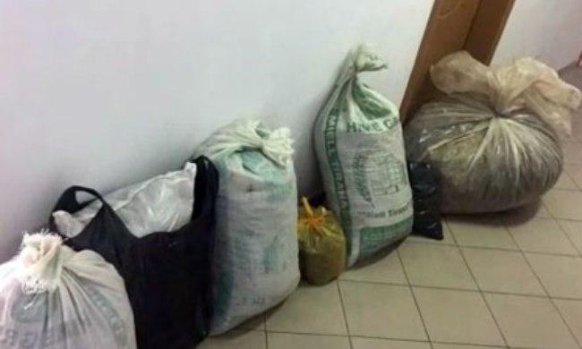 Policia sekuestron 43 kg kanabis