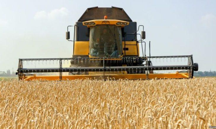 Kosova sivjet më pak grurë