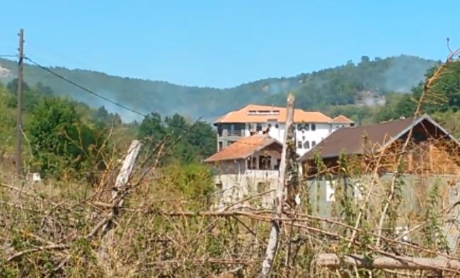 Digjet pylli te pushimoret në Orllan