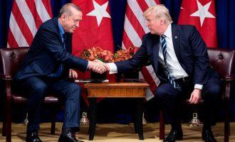 Trump: Erdogani është miku im