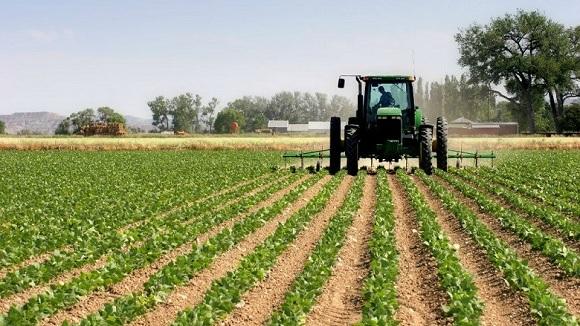 Thatësia dhe ngricat ulin rendimentet në bujqësi