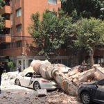 Katastrofë në Meksikë, tërmeti vret të paktën 42 persona