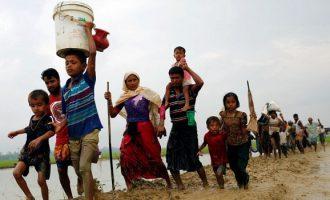 OKB kërkon më shumë kohë për hetimin e dhunës në Mianmar