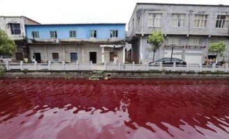 Lumi kthehet në 'gjak', tronditen banorët