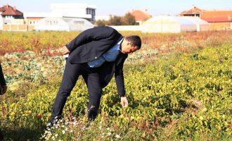 Hyseni premton përkrahjen e bujqësisë dhe mbrojtjen e ambientit