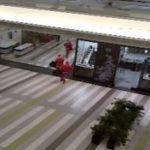 Arrestohet në Holandë një shqiptar, anëtar i bandës së 'Babagjyshëve'