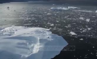 Ngritet alarm për ngrohjen e Arktikut
