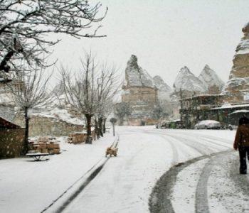 Evropa Veriore mbulohet nga bora