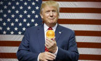 Çfarë kanë të përbashkët Trump dhe Bitcoin, sipas nobelistit?