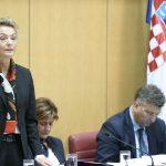Në BE diskutohet për vrasjen e Ivanoviq – ministrja kroate jep detaje
