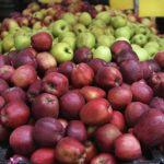 Rusia ia ndalon importimin Serbisë