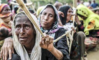 Sigurohen mbi 10 milionë dollarë për refugjatët Rohingya