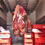 Vazhdon skandali me mish të prishur në Belgjikë – zbulohet kompania tjetër që eksportoi në Kosovë