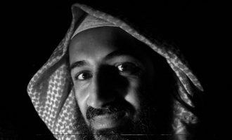 Çka lexonte Osama Bin Laden?