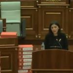 Kryeministrit po i flihet në seancën e demarkacionit