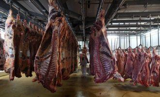 Pas Kosovës, mësohen emrat e dy vendeve të tjera që morën mish nga Belgjika