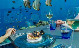 Si do të duket restoranti nënujor dhe kur do të hapet?
