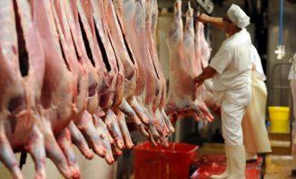 Skandali i mishit – Dy grupe parlamentare kërkojnë debat në Kuvend