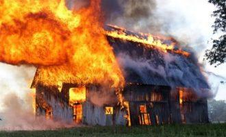 Zjarr i tmerrshëm në një fermë në Bërvenicë të Tetovës, digjen të gjalla shumë kafshë