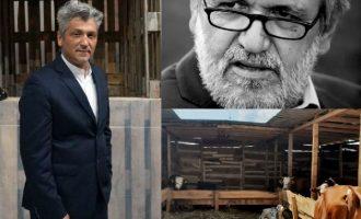 Akademik Kraja kundër instalacionit me lopë në Galeri: Buxheti i varfër i shtetit për bagla të lopëve