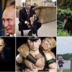 Takimi Trump-Putin, ironia ndaj presidentit të SHBA në rrjetet sociale